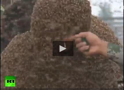 فیلم ثبت رکورد پوشاندن بدن با 1 میلیون زنبور عسل
