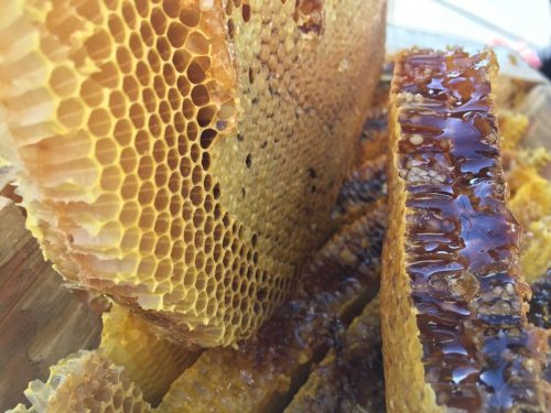 خرید عسل طبیعی سبلان