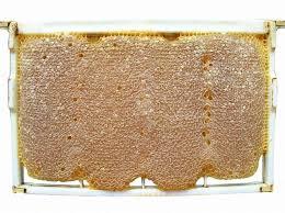 عسل با موم بخورید
